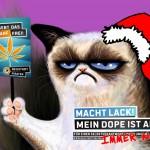 grumpycat-weihnachten