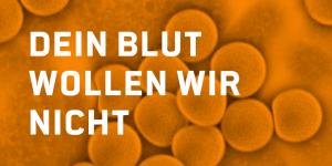 Auf den Bild sind orange eingefärbte Blutkörperchen zu sehen.
